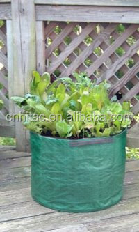 Environmental Friendly Pe Salad Growing Bag,Reusable Salad Planter ...