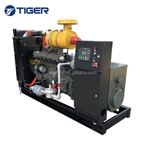 10kw to 1200kw high quality good price coal power generator