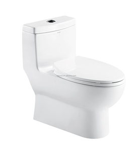 China Suppliers Water Saving Composting Toilet At Western Toilet Price