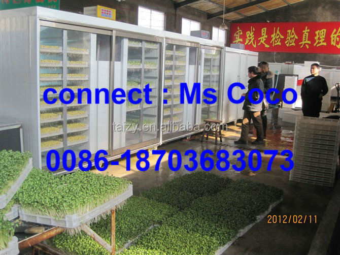 green fodders making machine for animal oat sprouts machine garlic sprouting machine/bean sprouting machine/0086-18703683073