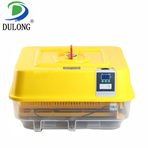 fully automatic machine chicken duck hatchery eggs with high quality