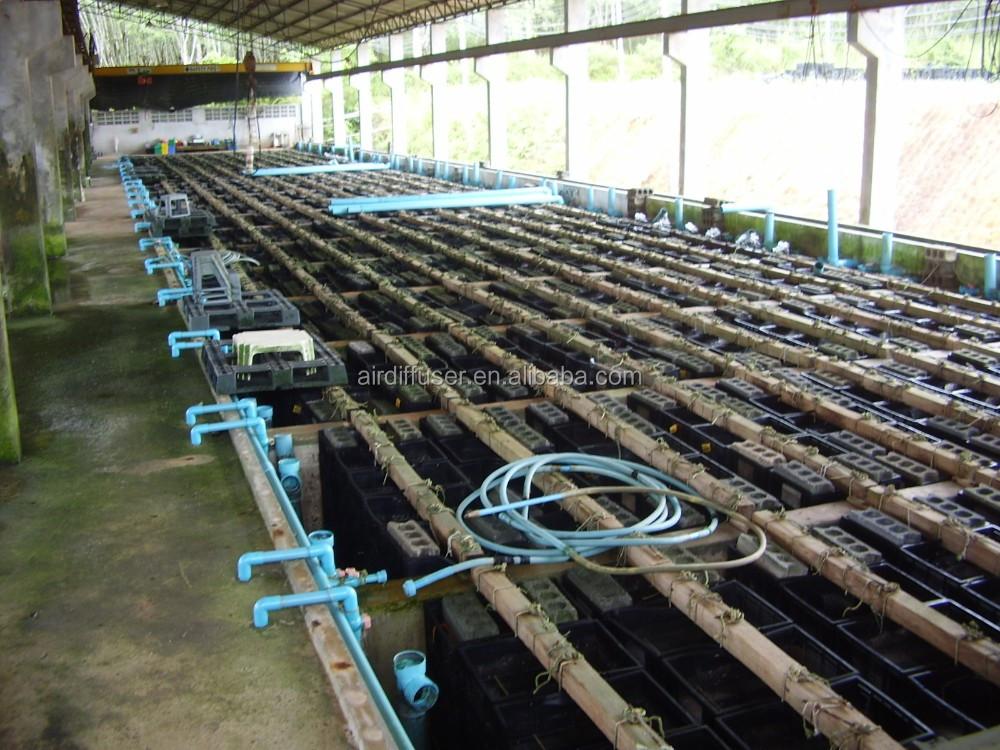 Microporous aeration hose for fish farm aeration tube for for Fish farm 3