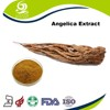 Chinese Herbs Angelica Keiskei Extract And Chinese Angelica Extract Powder