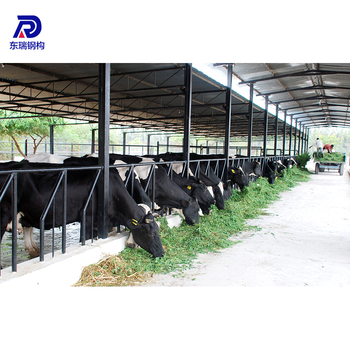 Low Cost Dairy Farm Structures Designs Steel Poultry Shed Farming House Buy Steel Structure Shed Design Poultry House Design Philippines Poultry