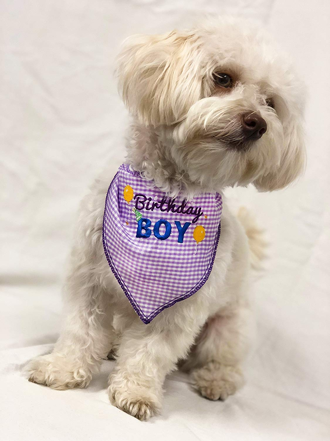 Get Quotations · Birthday Boy Dog Bandana Scarf - Pet Bandana w/Embroidered Design for Dog Birthday & Cheap Dog Birthday Bandana find Dog Birthday Bandana deals on line ...