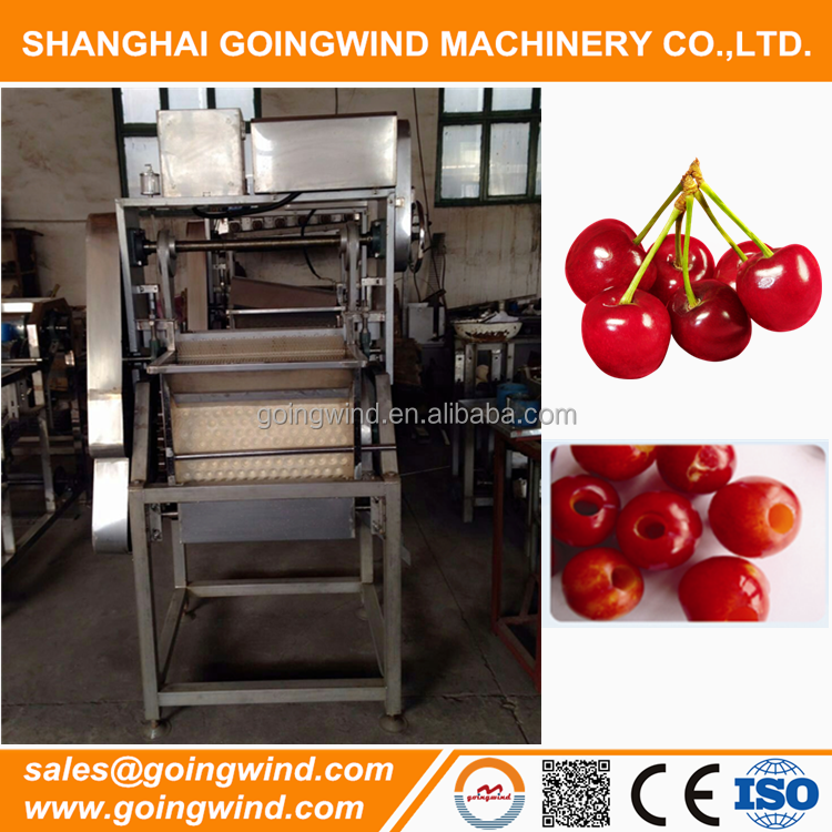 Commercial electric cherry pitter cherry pitting machine