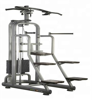 ASJ Fitness single station Easy Chin/Dip A008&Fitness Equipment