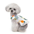 2019 New Summer Pet Dresses Dogs lovable Skirts Dog clothes
