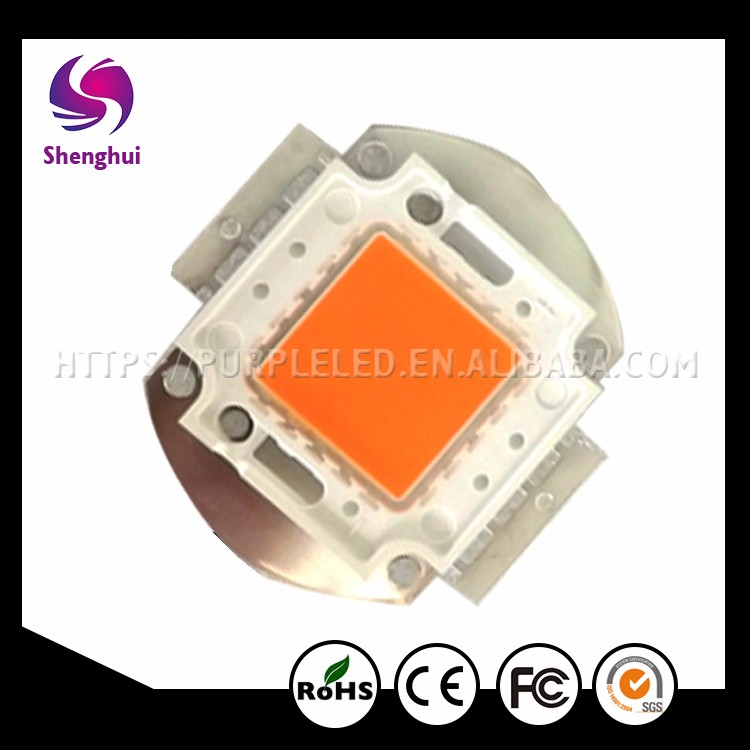 shenghui High Brightness Epistar Bridgelux 380-840NM Chip full spectrum cob chip, multi chip cob grow, led grow chip 100w