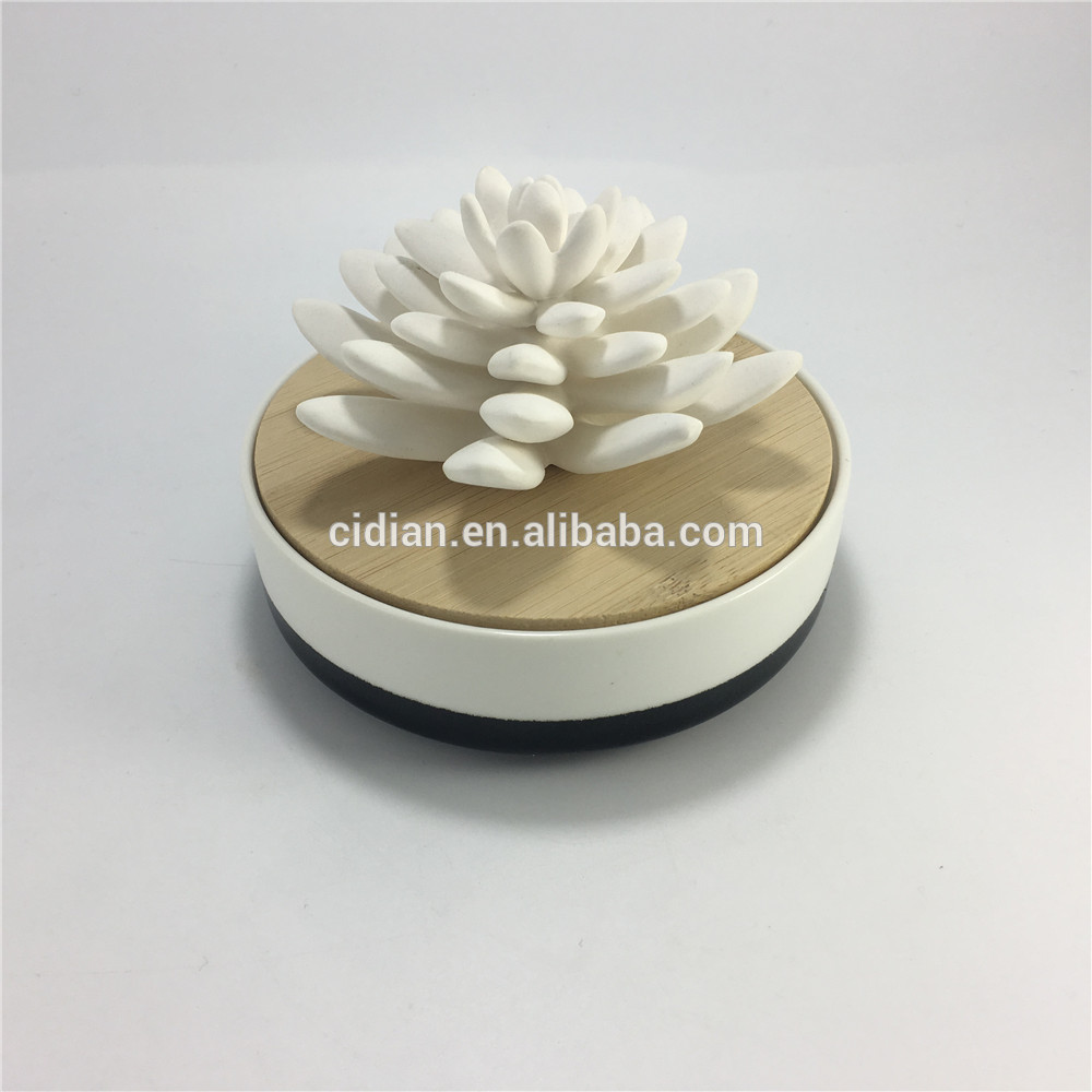 White Ceramic Cactus reed diffuser set desk decoration