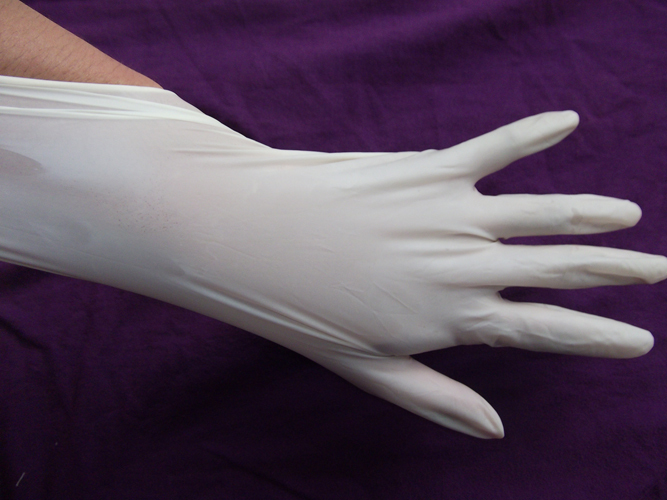 The experiment of medical dental examination gloves boxed powder free disposable latex gloves