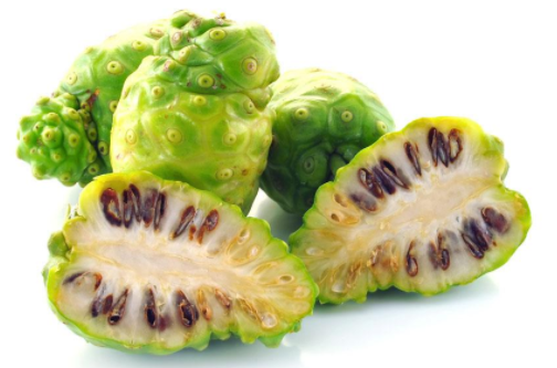 Hot sale factory supply 100% Pure Natural Noni Fruit Powder