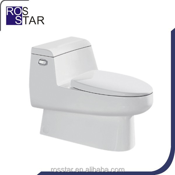 siphon flushing one-piece water closet RS-1104
