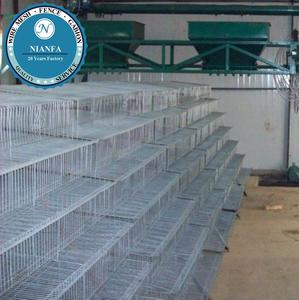 Trade Assurance galvanized 6 tiers commercial quail cages(Guangzhou Factory)