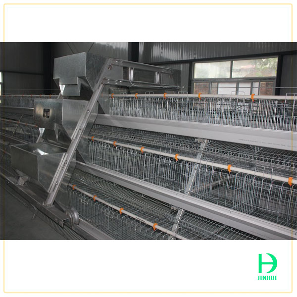 Poultry cage pigeon cages Poultry farming equipments made in China
