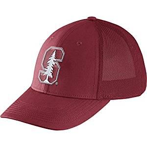 wholesale dealer 94854 25fbf Get Quotations · Nike Men s Legacy91 Cardinal Flex Mesh Back Hat