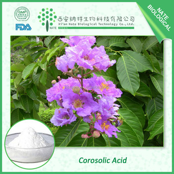 Plant extract Lagerstroemia speciosa Extract Corosolic Acid 98% by HPLC