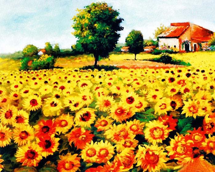 3000 Gambar Bunga Matahari Pemandangan  Gratis