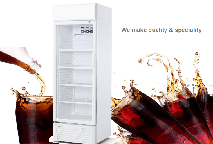 270L Shop Glass Display Refrigerator Showcase Cold Room Commercial Display Freezer For Beverage and Drink