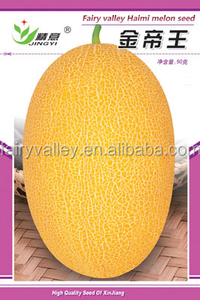 High diseases resistance Hybrid muskmelon seeds hami melon seeds For planting-Jin Di Wang