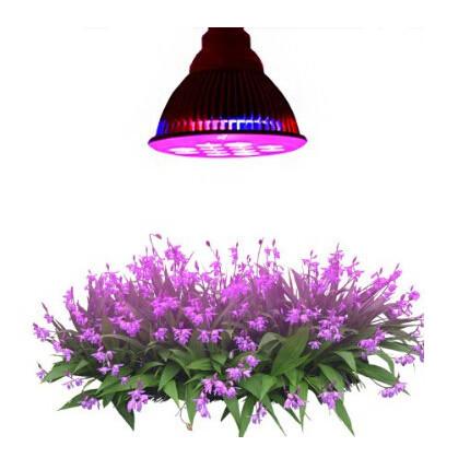 led light cheap china 12w growth green house light led grow light