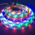 2019 Newest DC12V Customized Strip Lighting 5050 RGBW 4-in-1 Chip RGB+ White Flexible LED Strip Lights