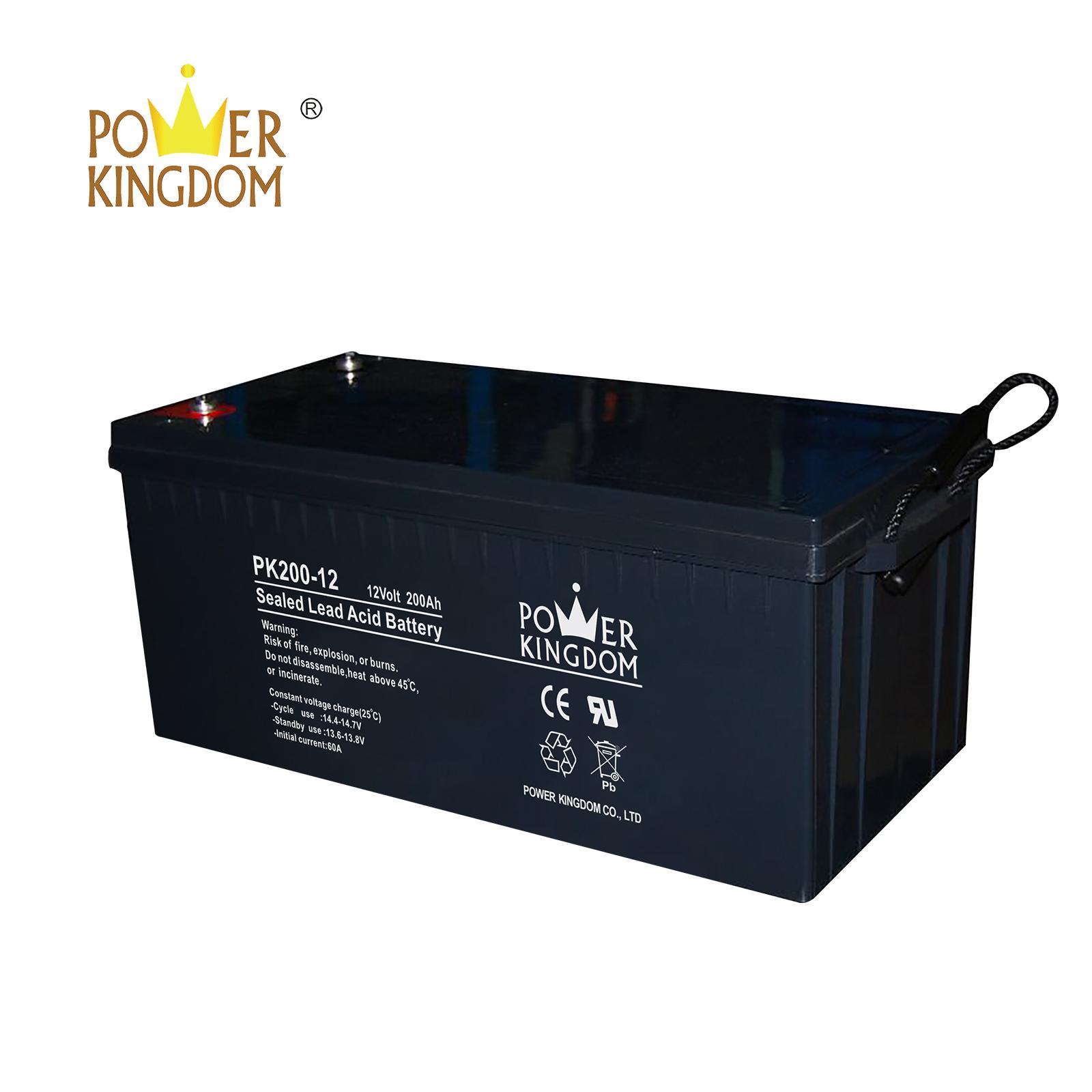 Power Kingdom testing agm deep cycle batteries Supply-2