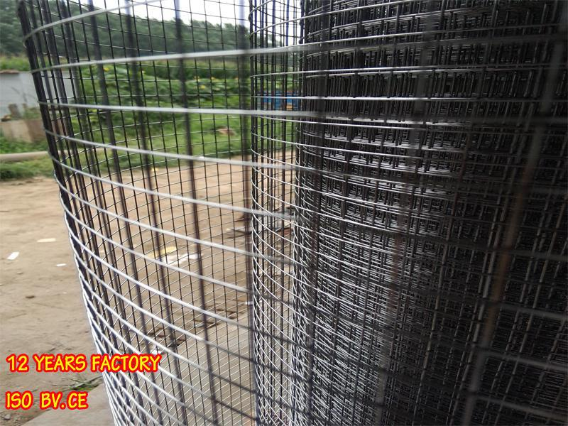 Welded Wire Fence For Chicken / Square Mesh Chicken Coop - Buy ...