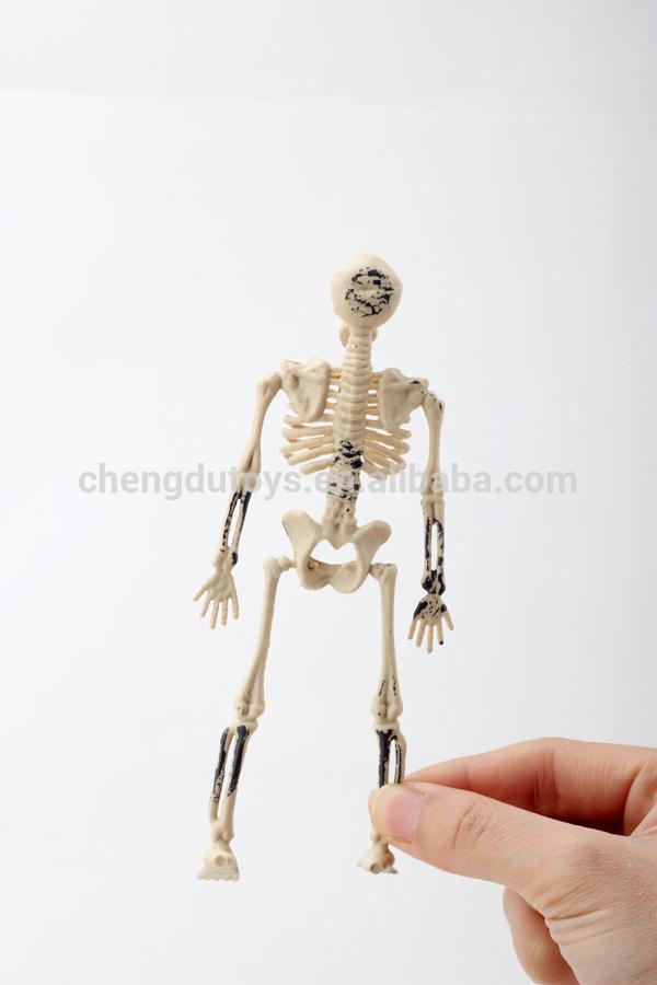 Fantastisch Menschliches Skelett Bilder Für Kinder Ideen - Anatomie ...