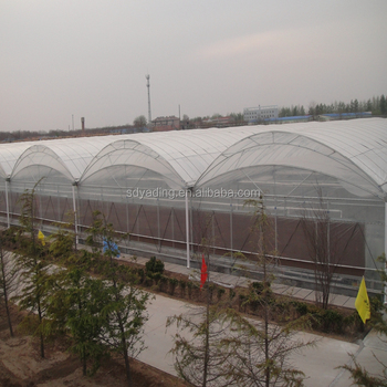 Agriculture Tunnel Used Greenhouse Frames For Sale Buy Greenhouse