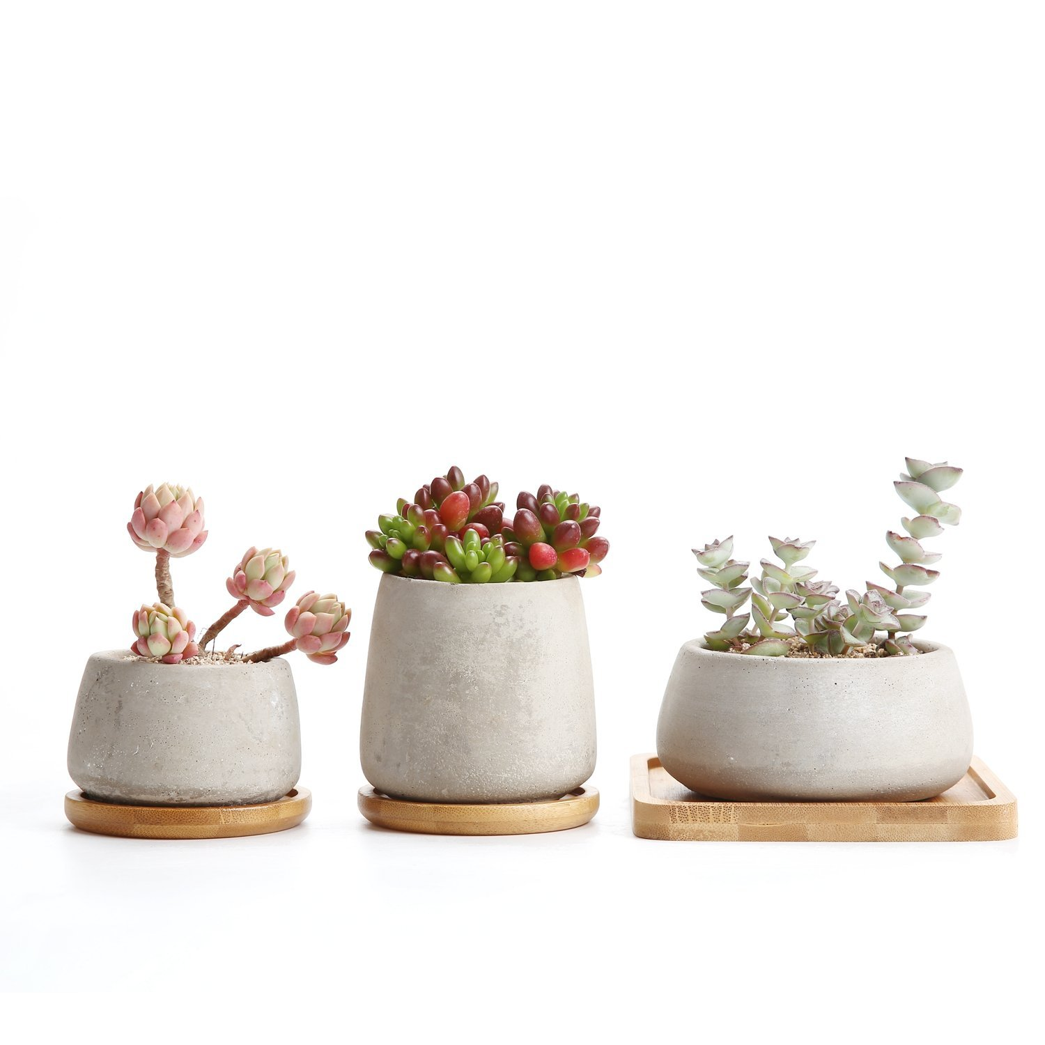 T4U 2.5-3.5 Inch Cement Serial Sets Sucuulent Cactus Plant Pots Flower Pots Planters Containers Window Boxes With Bamboo Tray Grey - Pack of 3