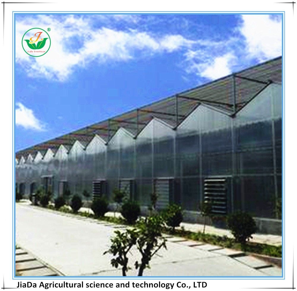hot sale ventilation greenhouse farming equipment with fan and wet curtain