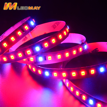 Hot Products DC24V SMD2835 Flexible Led Strip