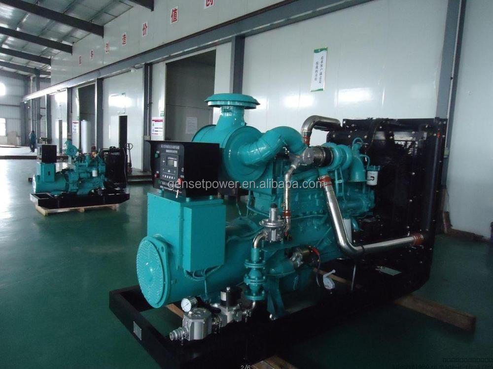 With Cummins Engine Electric Power 250kVA Biogas Generators