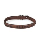 Lava Rock Stone Studded Leather Pet Dog Collars