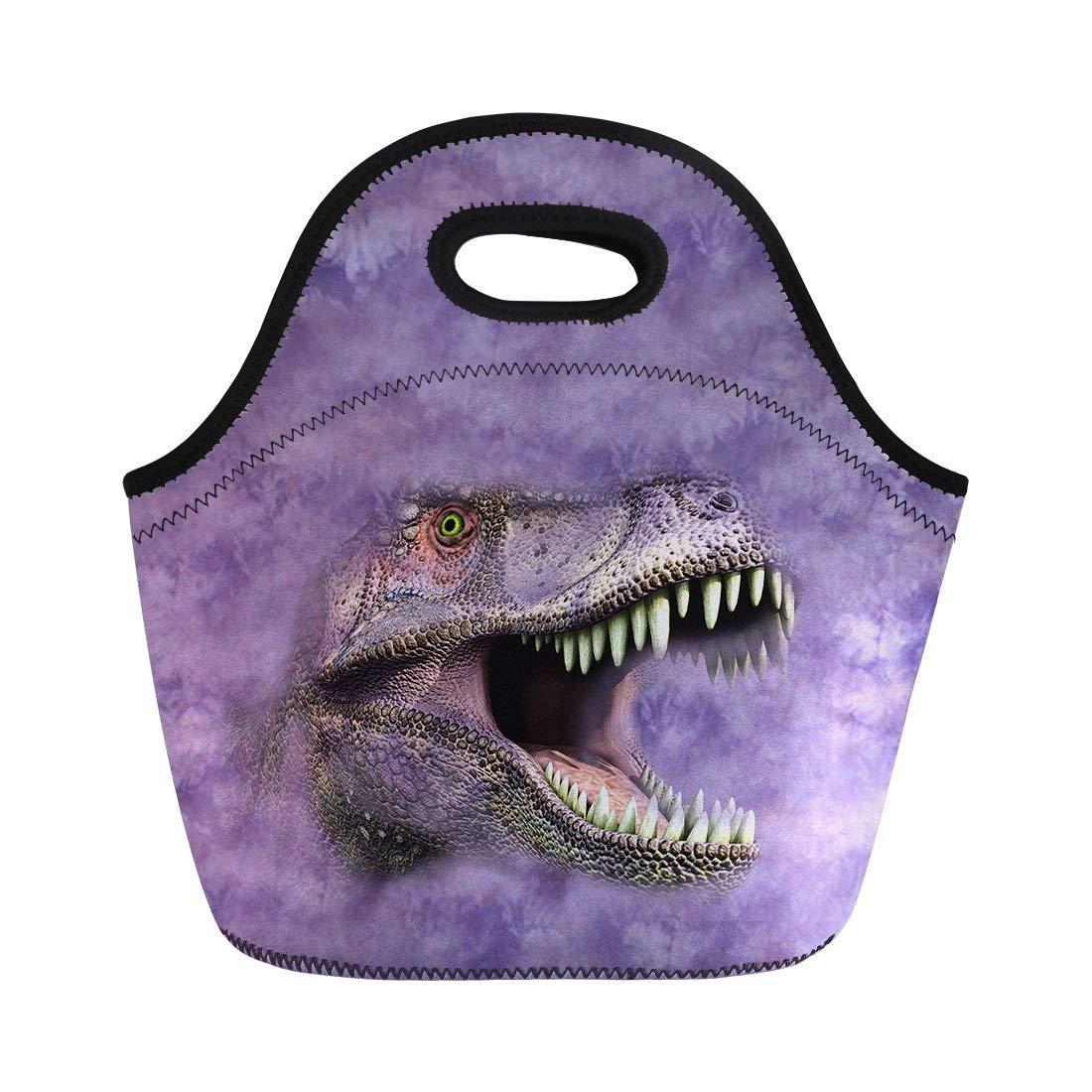 a40b3a87d92e Cheap Dinosaur Lunch Bag, find Dinosaur Lunch Bag deals on line at ...