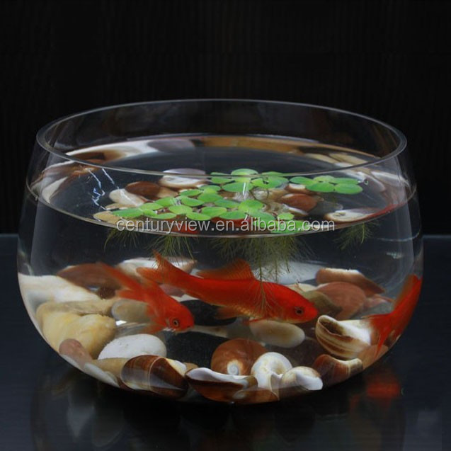 Glass fish bowl wholesale wholesale wide mouth fish bowl for Fish bowl price