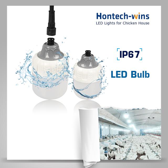 hontech unique design china poultry light supplier led poultry barn