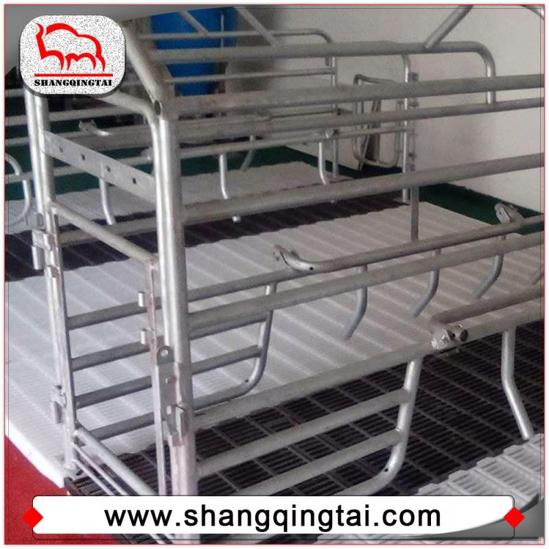 Quick Delivery Hot-Dip Galvanized Pig Farrowing Stalls Farrowing Crate