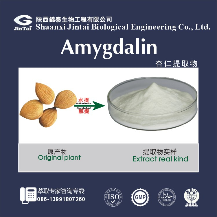 Almond Extract Powder/bitter almond extract/almond extract amygdalin 98%