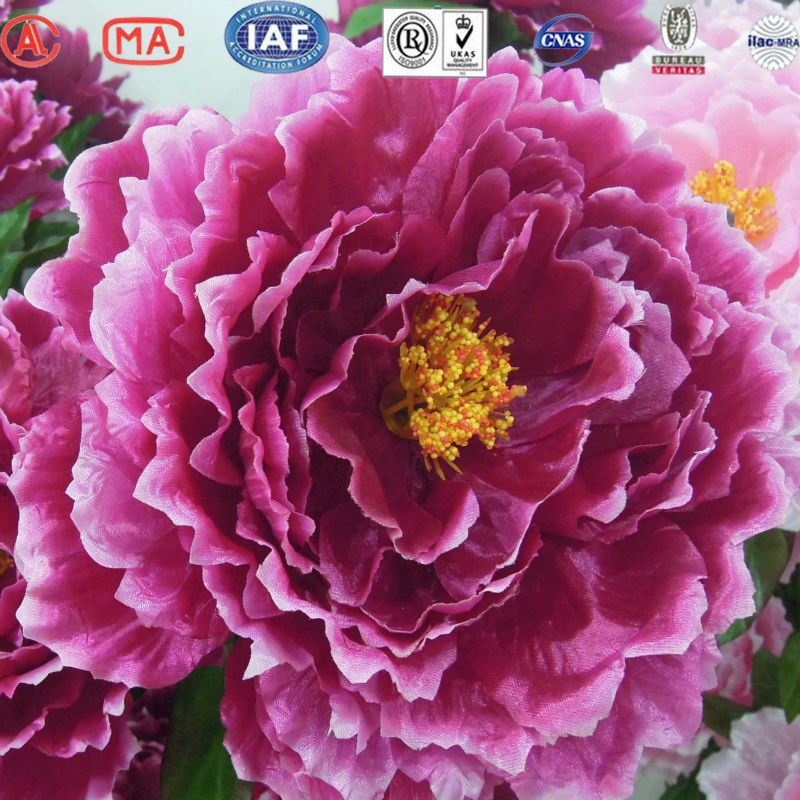 Import China natural brilliance artificial large peony wholesale silk flowers