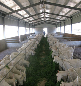 goat farm sheds design q235 galvanized steel for selling