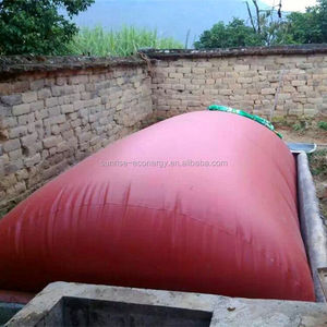 PVC waterproof membrane equipment for 50m3 biogas digester storage balloon tank with good quality