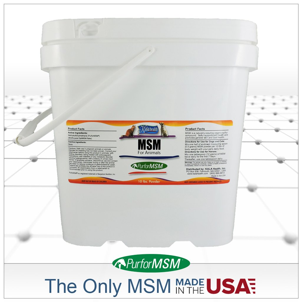 Buy Kala Health - MSM Powder (PurforMSM) for Equine and Canine Use