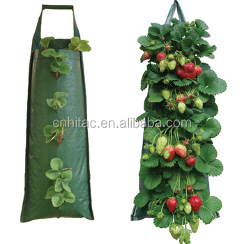 Hanging Strawberry Growing Bags Planter Bag Grow
