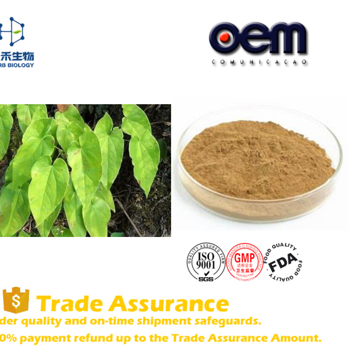 OEM Welcome Bulking price horny goat weed powder capsule icariin 20% 40% 60% 80% 98%