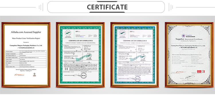 CE Certification MY-T20 Tea Bag Machine Price Made In China