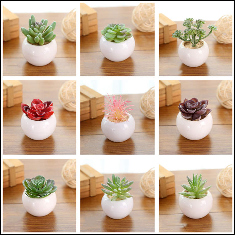 Small Succulent Pots Artificial Mini Succulent Cactus Plants Artificial