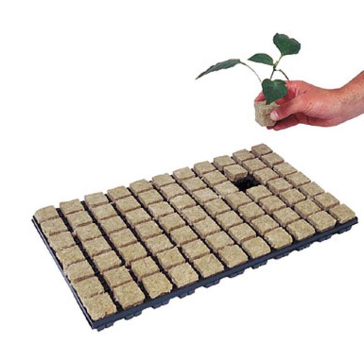 Skyplant Indoor Idroponica Rockwool Cubes Con Foro