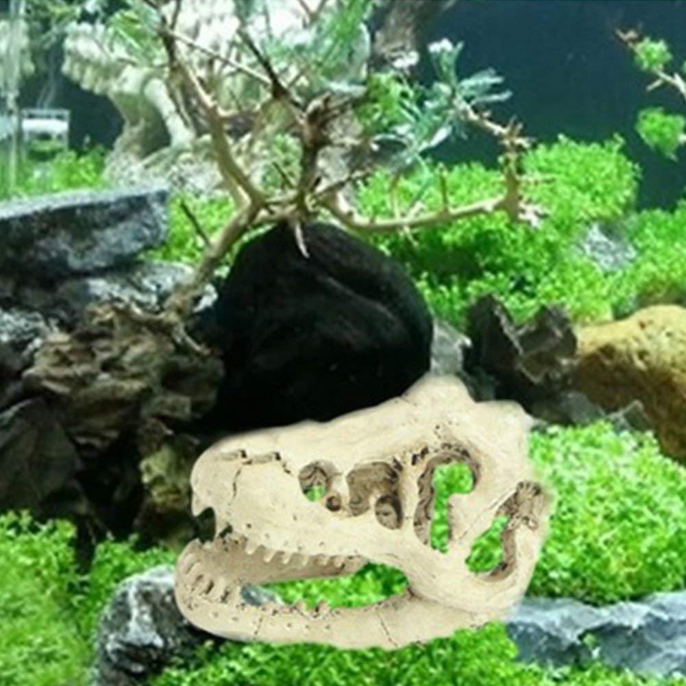 Cheap Aquarium Dragon Find Aquarium Dragon Deals On Line At Alibaba Com